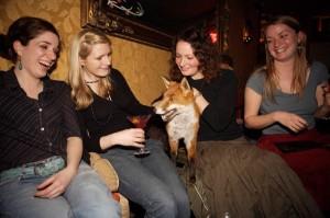 foxy_nightclub