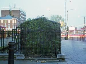 Stamford Hill_2