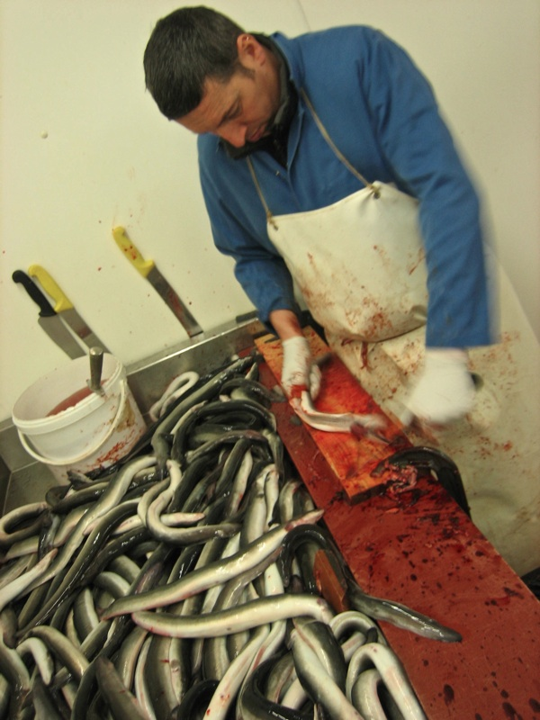 how to cook eel fish