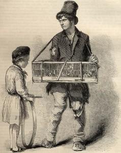The Crippled Street Bird-seller