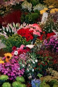 Flowers at Joannes Florist Globe Road Market by Jeremy Freedman 2011