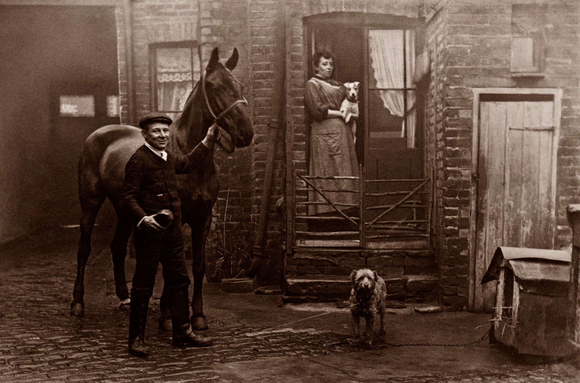 The Dogs Of Old London Spitalfields Life