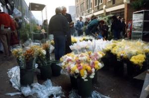 Virginia Flower Market, 13 Nov 1988